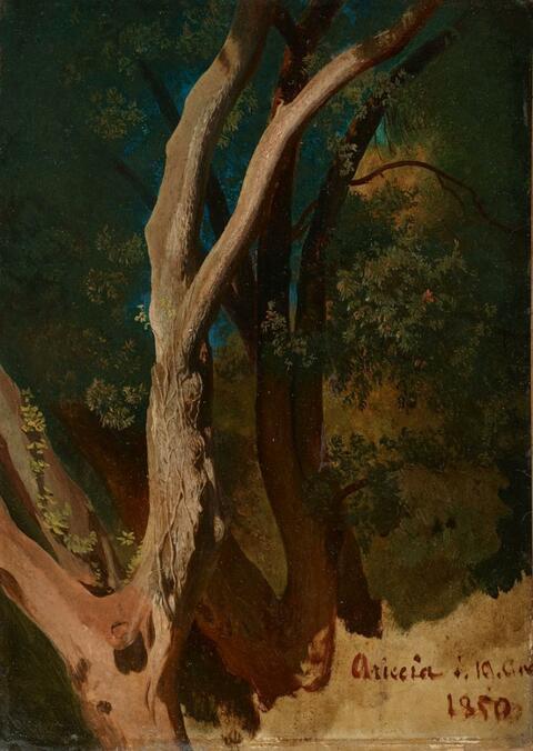 Oswald Achenbach - STUDY OF A TREE