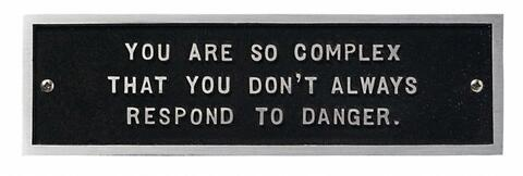 Jenny Holzer - From the Survival Series: You are so complex...