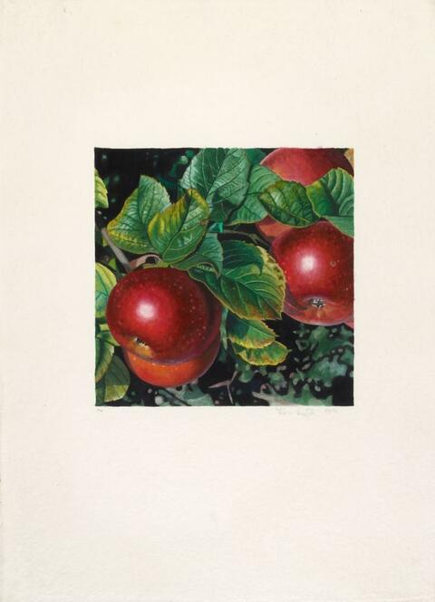Karin Kneffel - Ohne Titel (Äpfel)