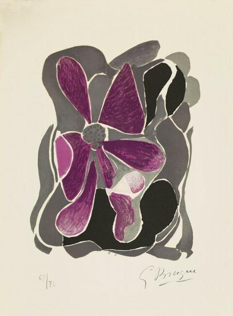 Georges Braque - Iris