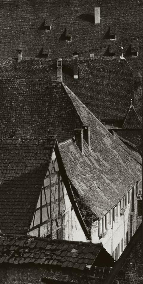 Ludwig Windstosser - MAULBRONN