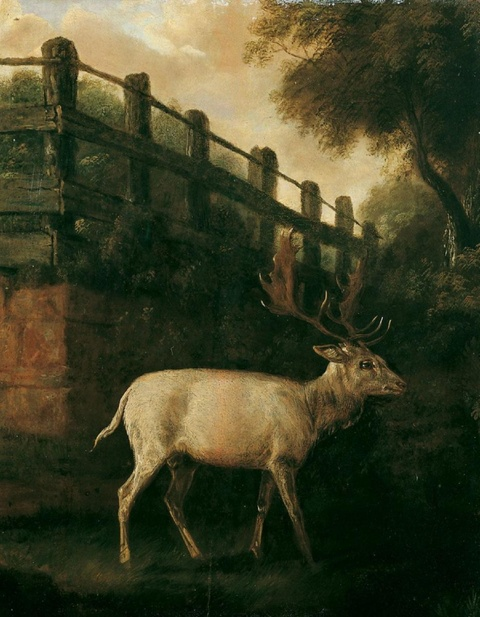 Johann Elias Ridinger, attributed to - A WHITE DEER IN AN ENCLOSURE