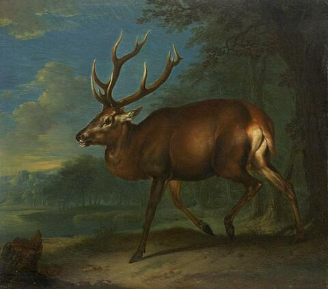Johann Elias Ridinger, attributed to - WOODED LANDSCAPE WITH DEER