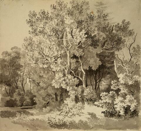 Deutscher Künstler des 19. Jahrhunderts - BEWALDETE LANDSCHAFT