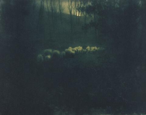 Edward Steichen - Pastoral - Moonlight