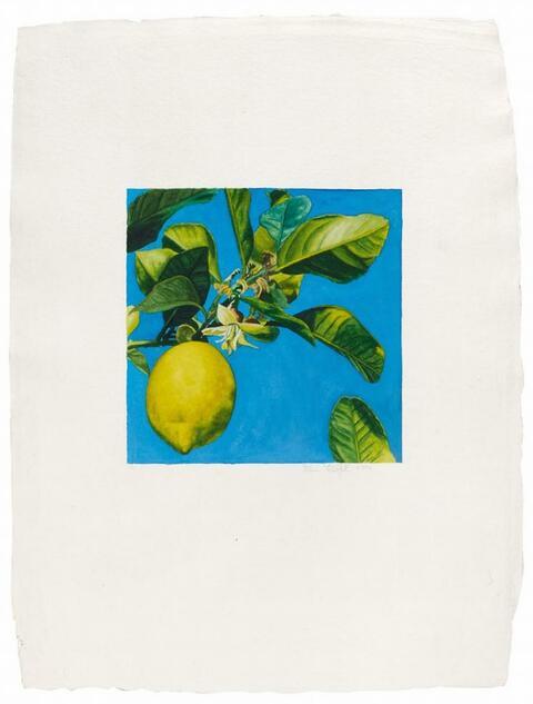 Karin Kneffel - Ohne Titel (Zitrone)