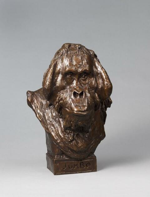 August Gaul - Jumbo-Kopf (Kopf eines Orang Utans)
