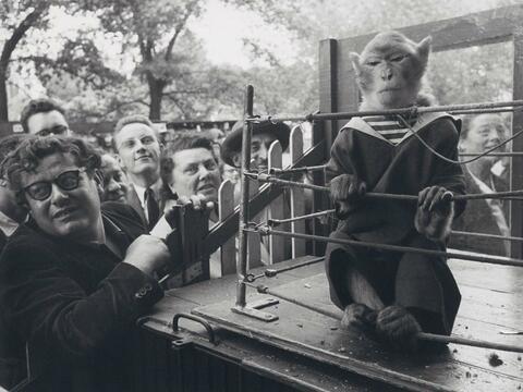 Robert Doisneau - Superior Animals