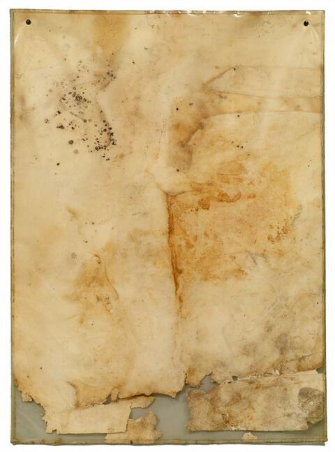 Dieter Roth - Schimmelblatt (mouldy sheet of paper)